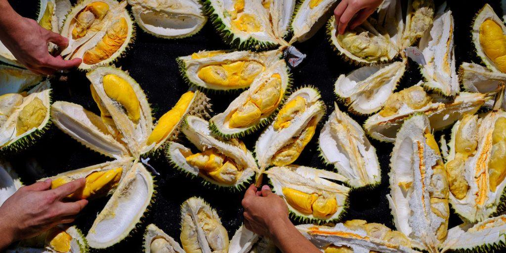 Harga Durian Musangking